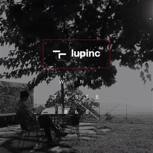 BrainUp Web Design